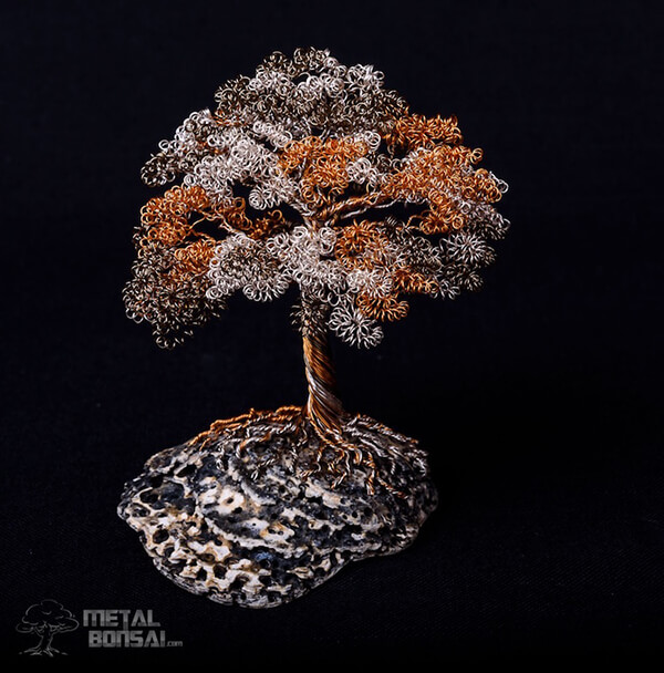 Handcrafted Wire Bonsai Tree Sculpture by Matthew Gollop
