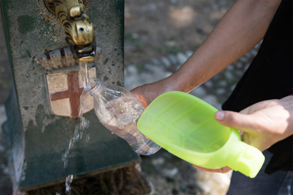Leaf: Innovative Pet Water Dispenser