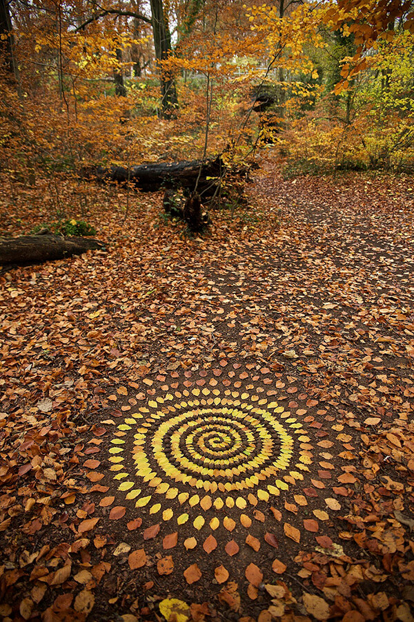 Nature Mandalas from Leaves, Rocks and Twigs