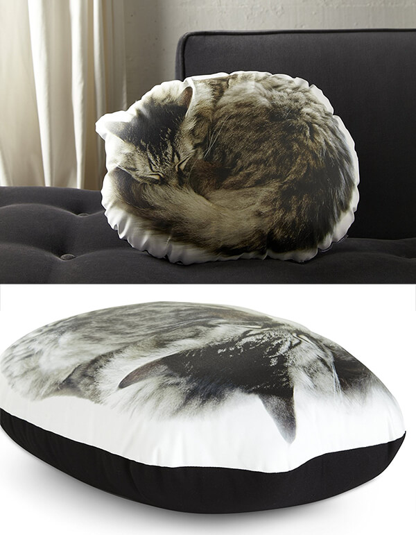 Playful Cat Inspired Product Designs