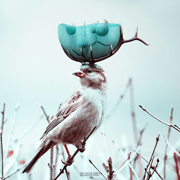 Whimsical Photo Manipulation by Julien Tabet