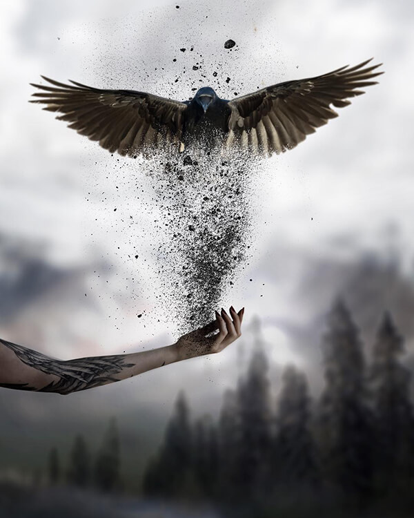 Creative Photo Manipulation by skip_closer