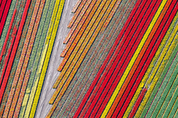 Best Aerial Photos from 'Drone Awards 2018'
