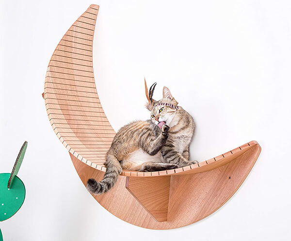 Luxury Cat Furniture from MyZoo
