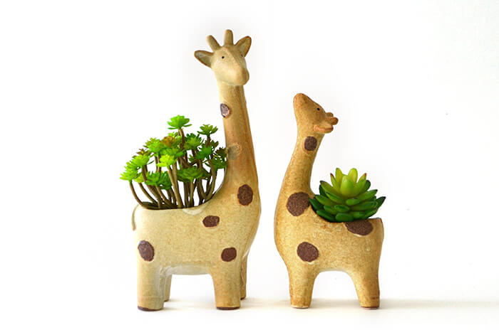 Unique Handcrafted Planters That Almost Everyone Will Love