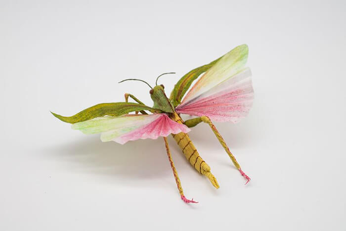 Realistic Animals, Insects and Plants Made Of Crepe Paper