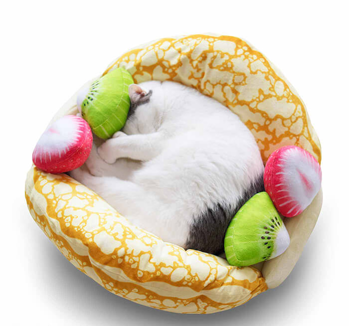 Your Cat Can Sleep Anywhere and Now They can Sleep on Crepe Omelet as Well