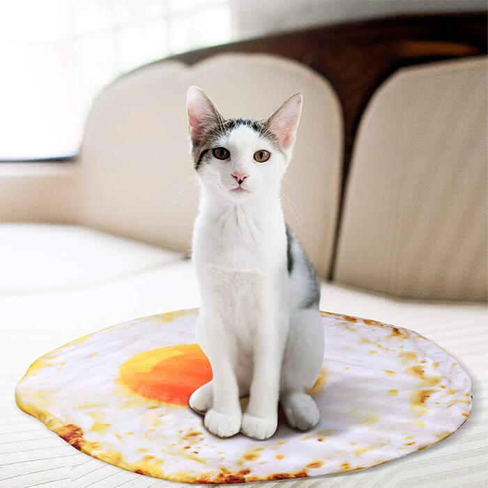 7 Playful and Delicious Food Shape Pet Bed